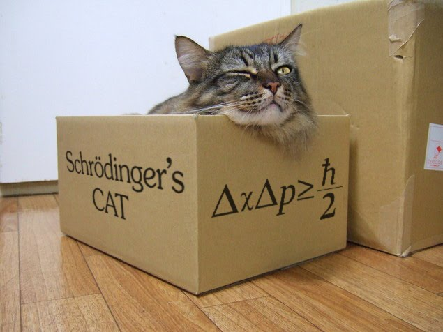 Save Schrödinger's cat – dead or alive! | heinakroon.com