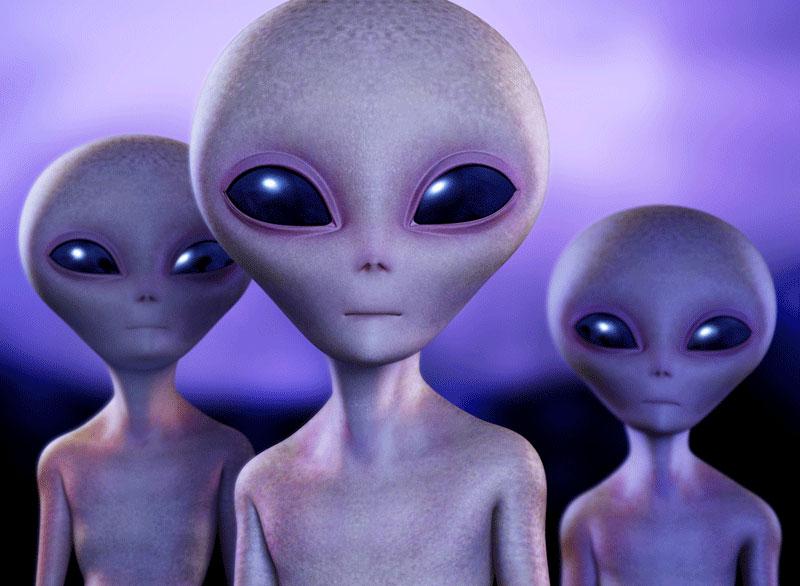 [Image: grey-aliens.jpg]